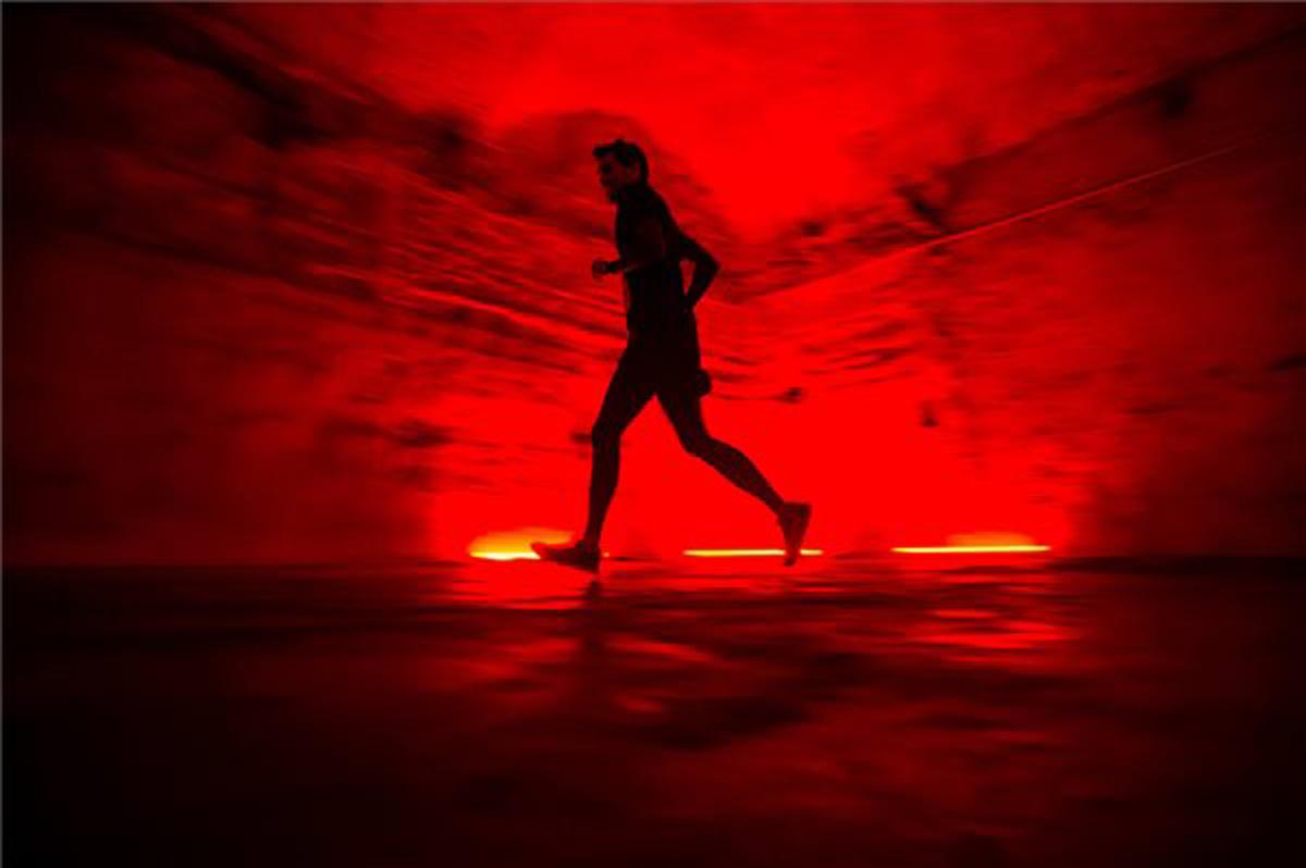 Futóverseny a pincében